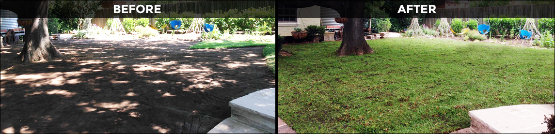 Before and After - Lawn Installation by Greener Lawn