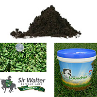 sir walter preparation bundle