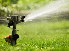 Watering Greener Lawn