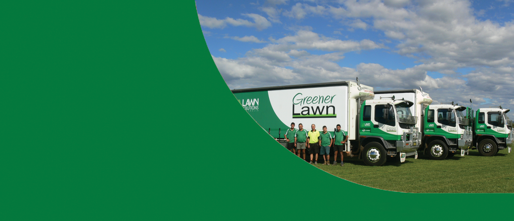 10 Year Guarantee from Greener Lawn Turf Supplier