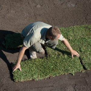Turf Laying Service