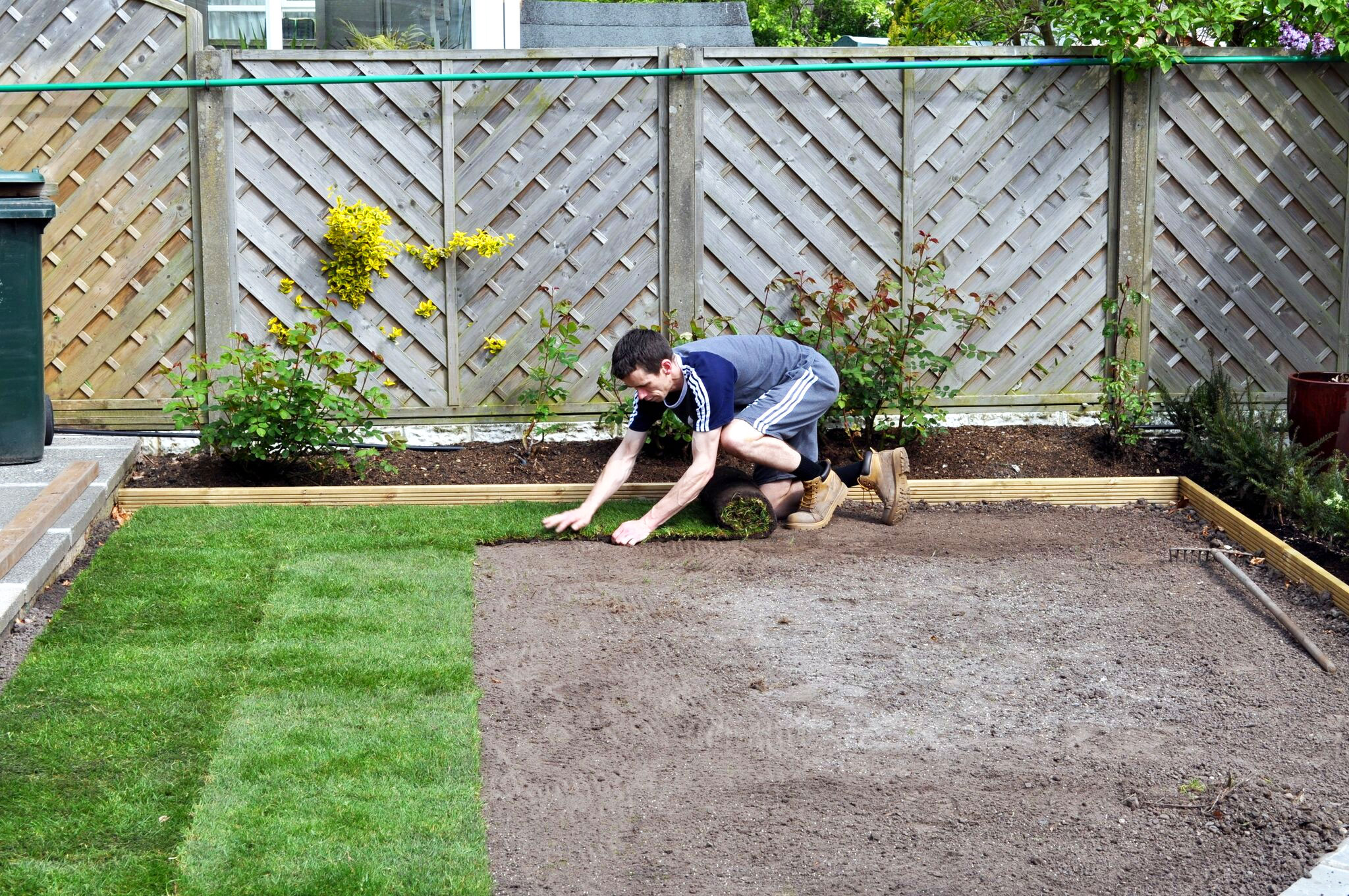 man laying turf in the lawn