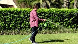Chemical spray on grass to get rid of weed