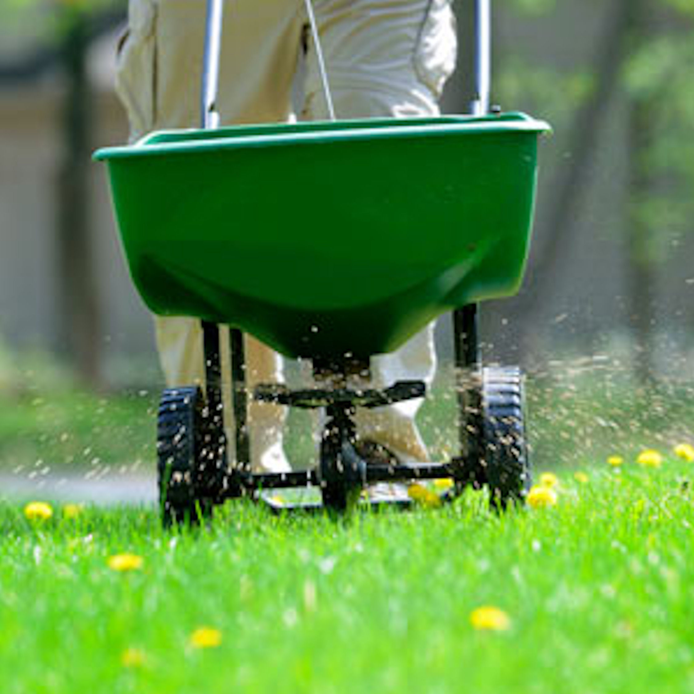 fertilizing lawn supplies