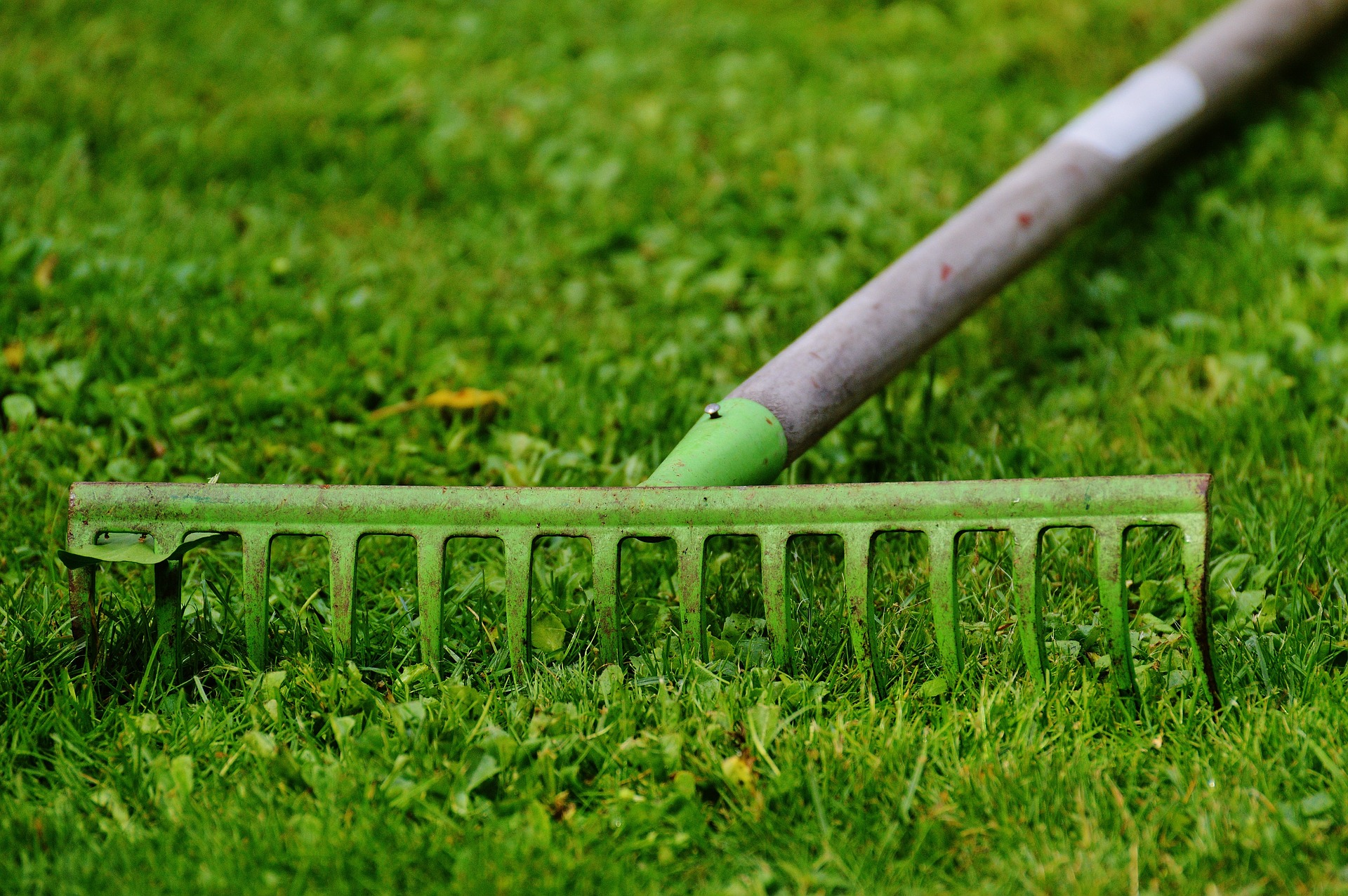 rake and recycle grass clippings