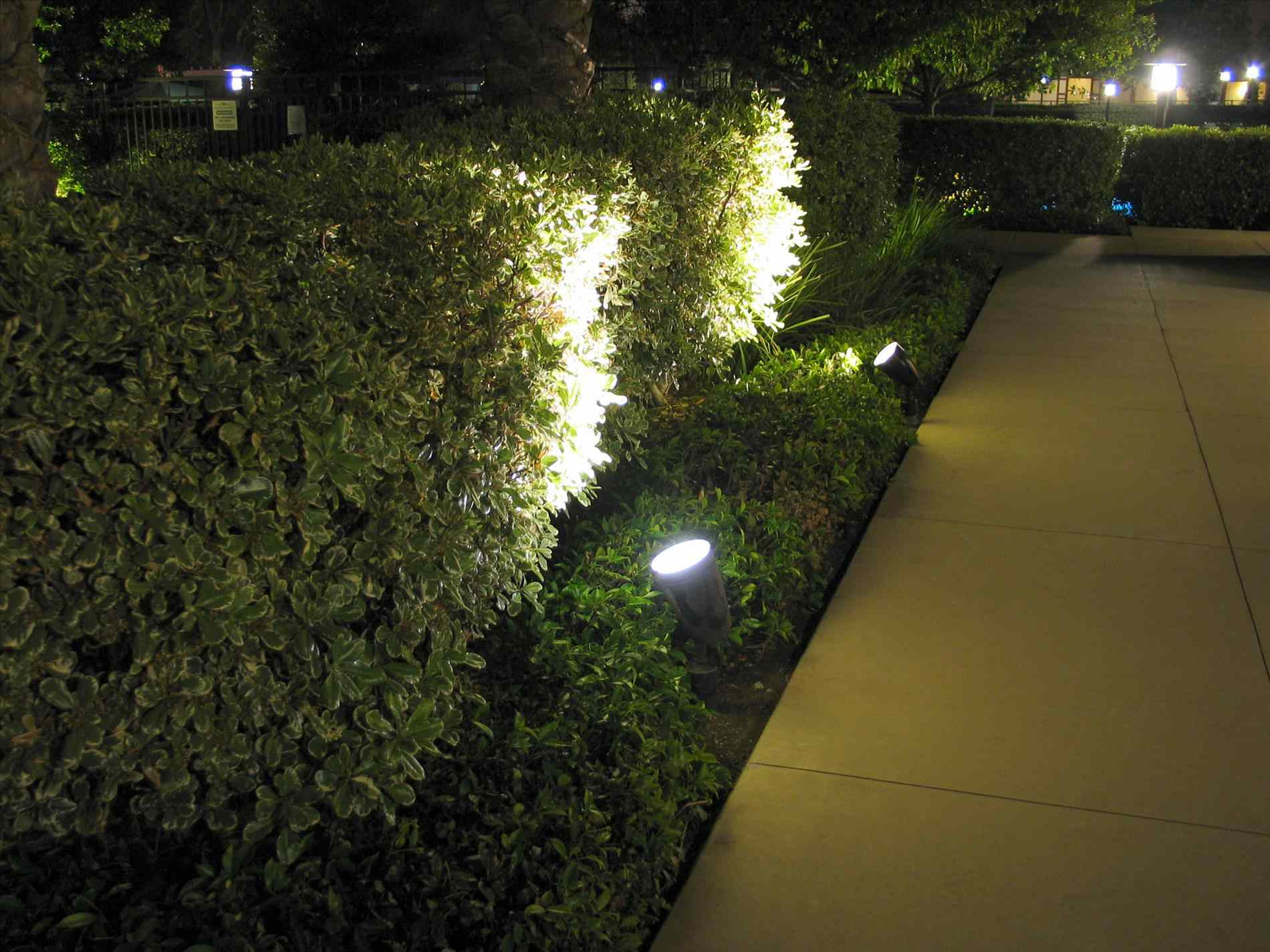 Landscape lighting for beautiful lawn at night